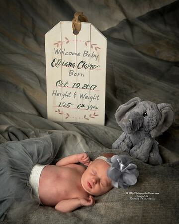 New Born Baby Photographs by Evansville photographer Bret Roebling
