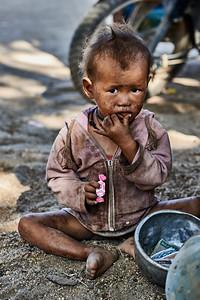 Little pink beggar