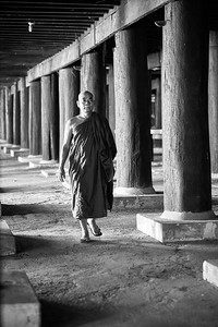 A monk under the temple