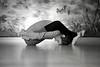 wendy yoga-11