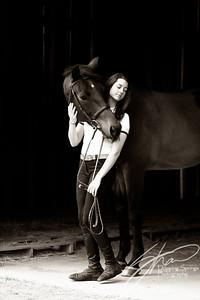 MK horse-2561