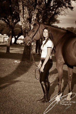 MK horse-2073