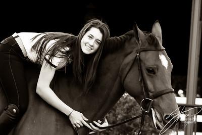 MK horse-2519