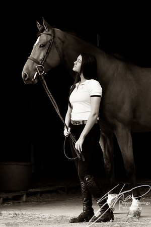 MK horse-2216