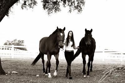 MK horse-1992