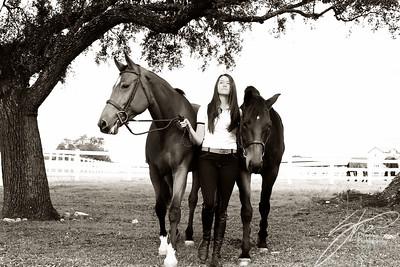 MK horse-2001