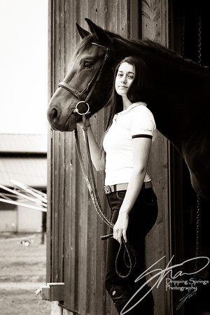 MK horse-2606
