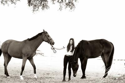 MK horse-1957