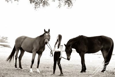 MK horse-1965