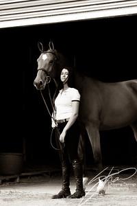 MK horse-2208