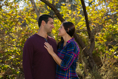 AndyArtPhotography_George-Alicia Engagement_Nov,5, 2016_129