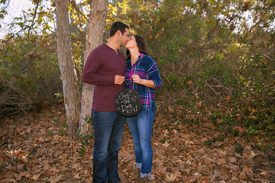 AndyArtPhotography_George-Alicia Engagement_Nov,5, 2016_121