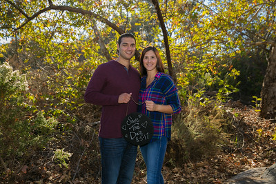 AndyArtPhotography_George-Alicia Engagement_Nov,5, 2016_130