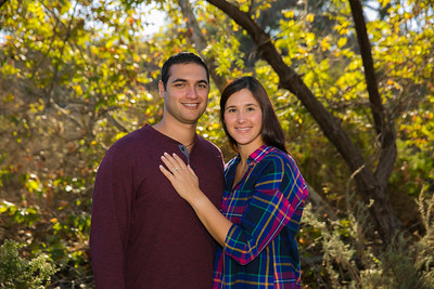 AndyArtPhotography_George-Alicia Engagement_Nov,5, 2016_128
