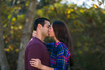 AndyArtPhotography_George-Alicia Engagement_Nov,5, 2016_111