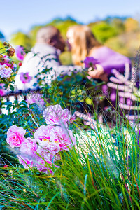 Engagement Session-4
