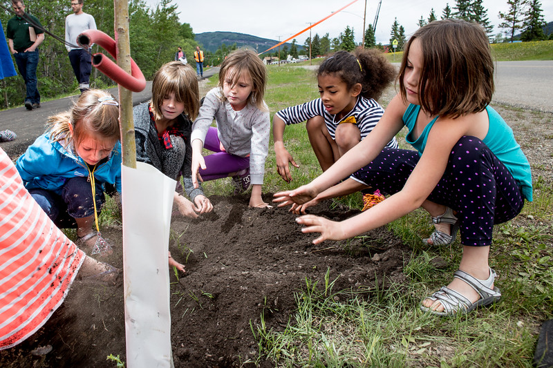 A group of kids from Tumbler Rdige Elementary help plant a tree at a Tree Planing event across the street from the school.
