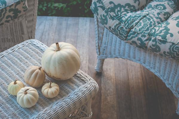 Pumpkins + Gourds