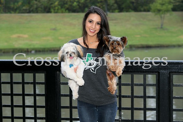 DSIG & Dogs