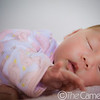 0M2Q7670-noelle-newborn portrait-2010-oahu-hawaii