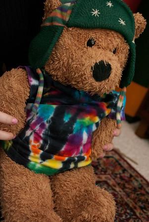 Stuffed Bear Adventures