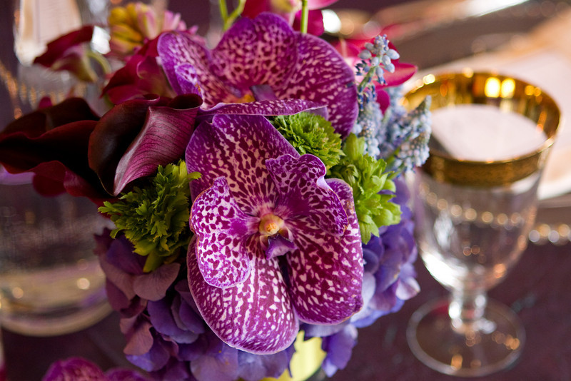 geneva_wedding_walk_feb_2010_048