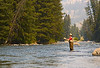 Robin Fly-fishing in Montana<br /> August, 2007