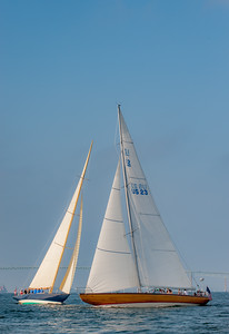 Sail boat races in Newport Harbor