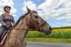 20170910_Sunflowers_Horses_001