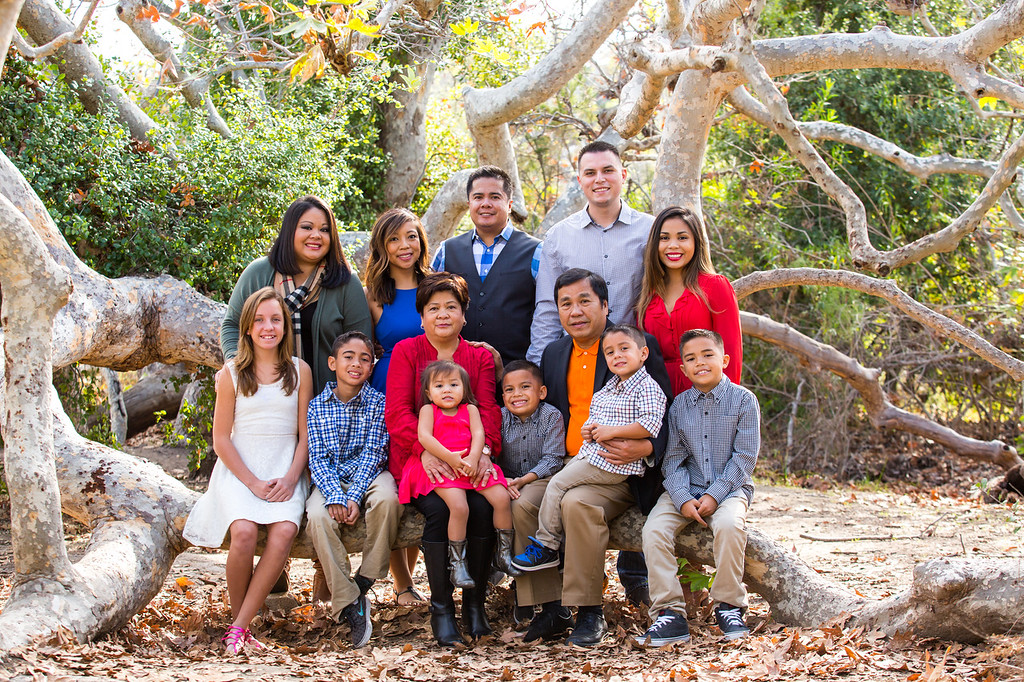 '15 Domingo Holiday Portraits