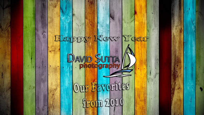 David Sutta Photography 2010 Recap
