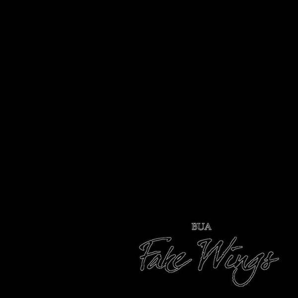 BUA-FakeWings01