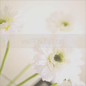 WeiHunCG01