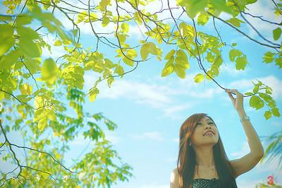 G3K_MeiFang105