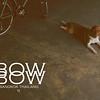 BowBow02