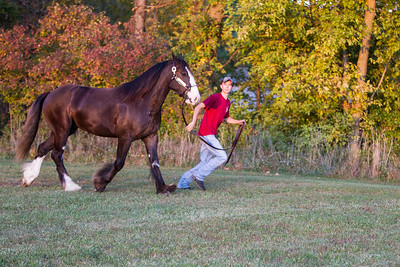 R&R Stables  ©2011 JR Howell. All Rights Reserved.  JR Howell 1812 37th Street Ct Moline, IL 61265 JRHowell@me.com