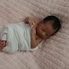 Zoey's newborn session