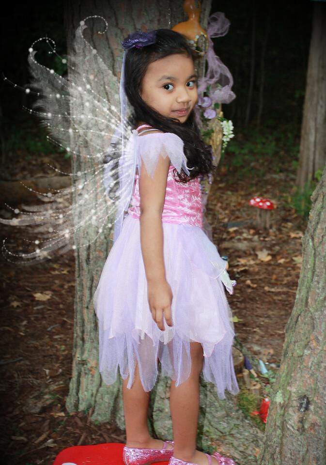 IMG_2546 wings