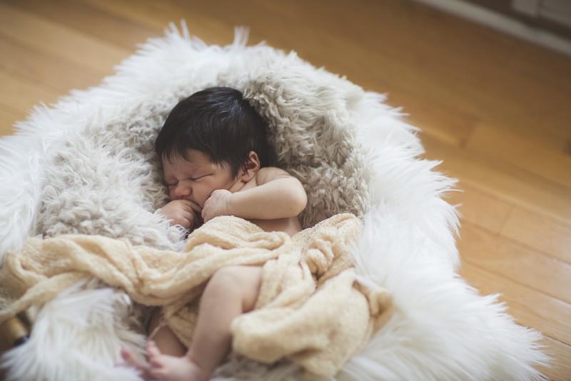 Hadley Newborn