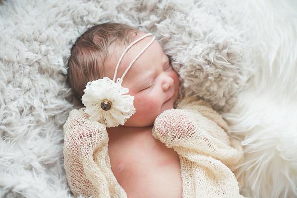 Shelton | Newborn