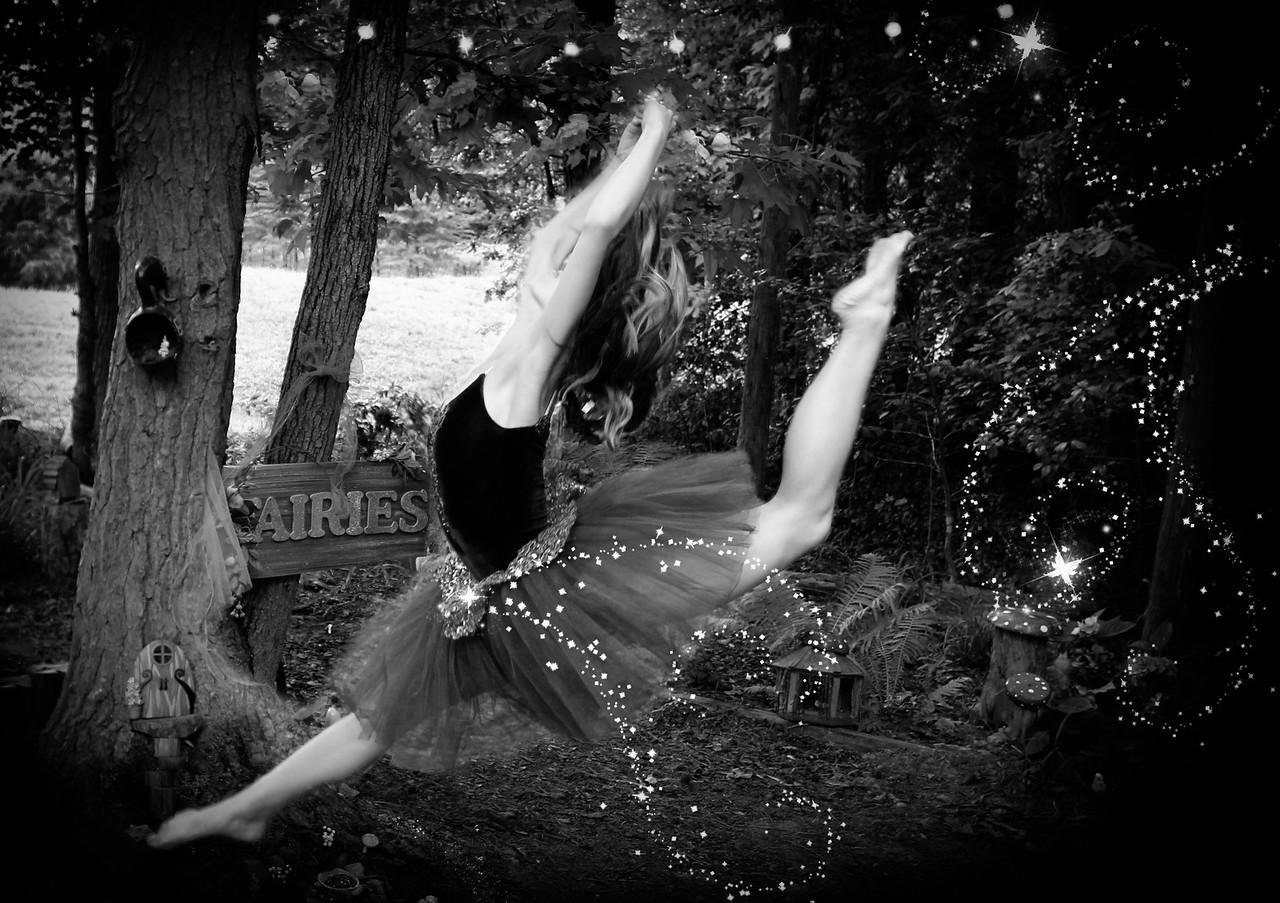IMG_8978 sparkle bw