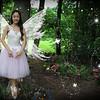 IMG_8763 wings