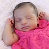 Kiara Murthi<br /> <br /> Newborn Portraits