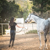 0263_Churchill Equestrian