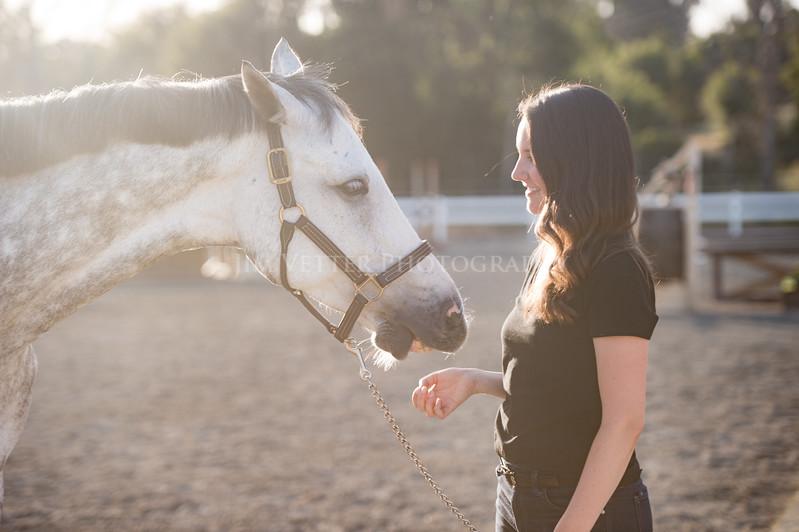 0217_Churchill Equestrian