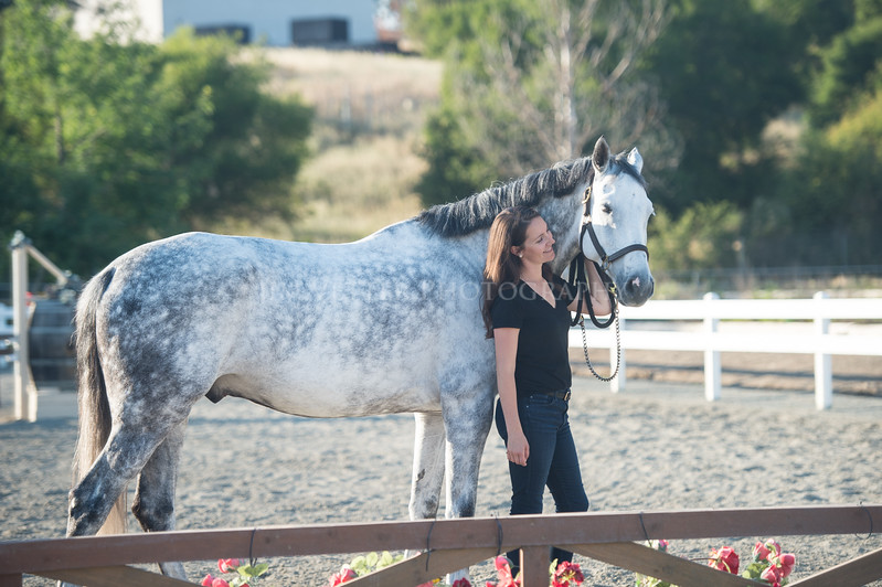 0194_Churchill Equestrian
