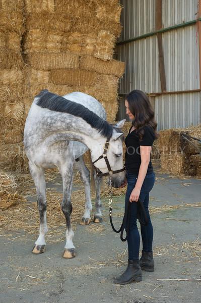 0047_Churchill Equestrian