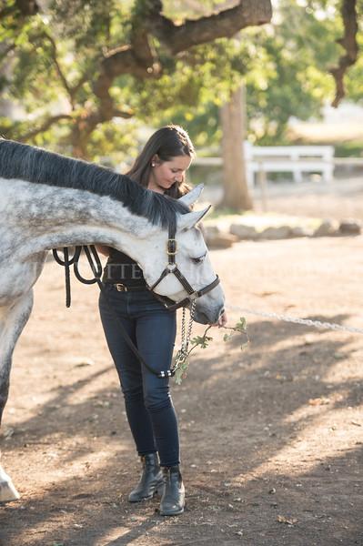 0159_Churchill Equestrian