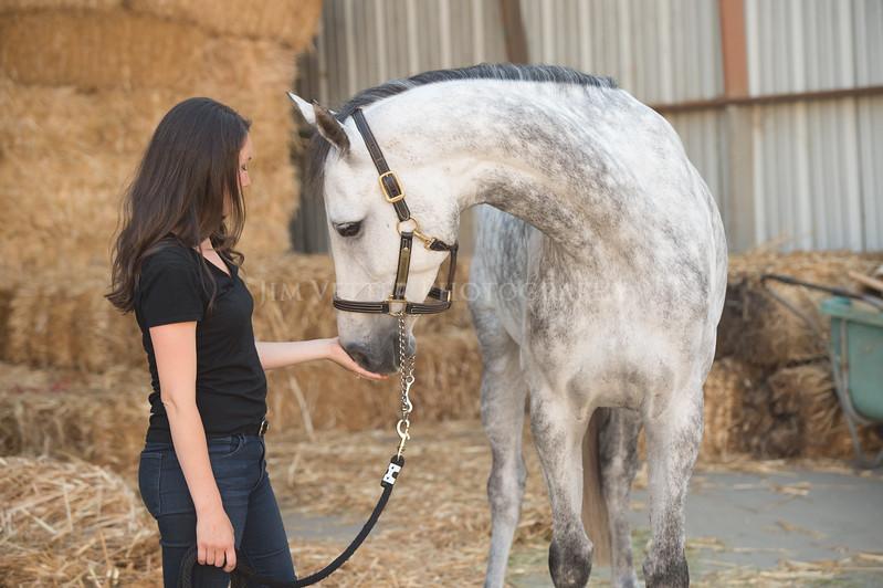 0022_Churchill Equestrian