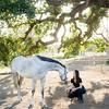 0164_Churchill Equestrian